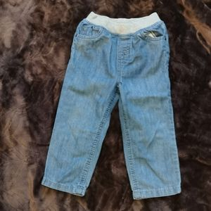 Basic orchestra toddler jeans size 24T